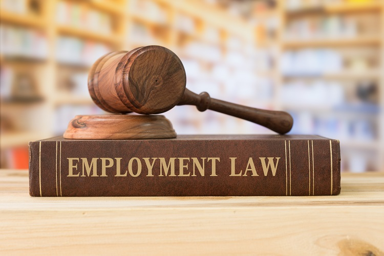 Image result for employment law attorney